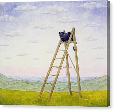 The Ladder Cat Canvas Print by Ditz