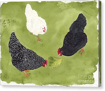 The Ladies Love Salad Three Hens With Lettuce Canvas Print
