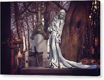 The Lady Of Powazki Canvas Print by Carol Japp