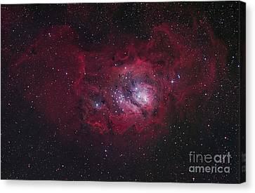 The Lagoon Nebula Canvas Print