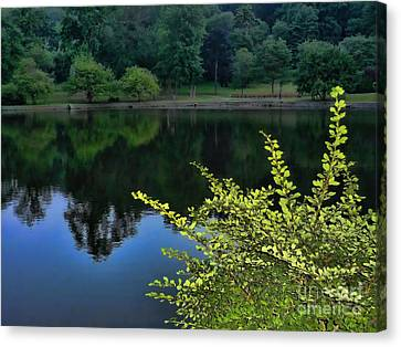 Reflection Canvas Print - The Lake by Jeff Breiman