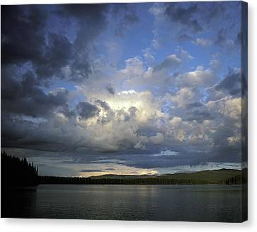 The Land Of Loon Canvas Print by Charlie Osborn