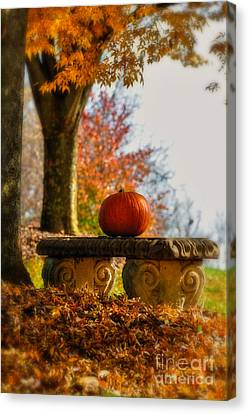 Autumn Leaf Canvas Print - The Last Pumpkin by Lois Bryan