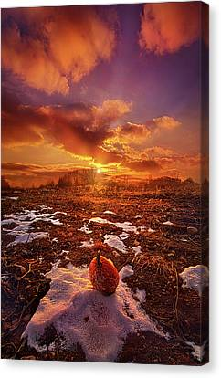 Canvas Print featuring the photograph The Last Pumpkin by Phil Koch