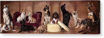 The Last Pupper Canvas Print by Angel Pachkowski