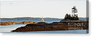 The Last Sail Canvas Print by Christopher Mace