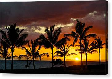 The Last Sunset Canvas Print by James Walsh