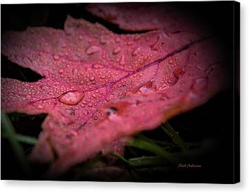 The Last Tear Of Summer Canvas Print by Mick Anderson