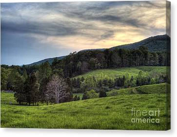 The Late Bloomer Canvas Print by Pete Hellmann