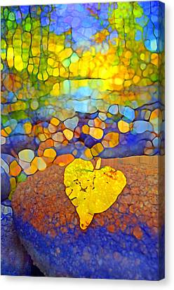 The Leaf At The Creek Canvas Print by Tara Turner