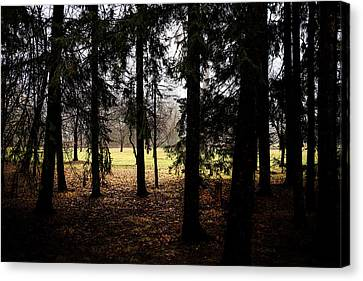 The Light After The Woods Canvas Print by Celso Bressan