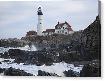 Rocky Maine Coast Canvas Print - The Light by Bonny Bartlett