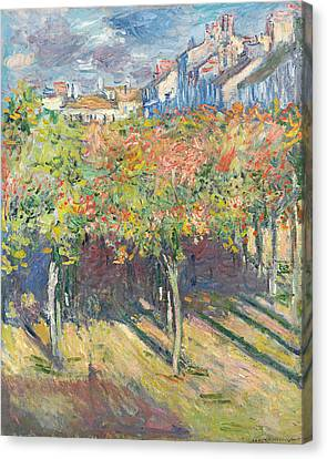 Lime Tree Canvas Print - The Lime Trees At Poissy by Claude Monet