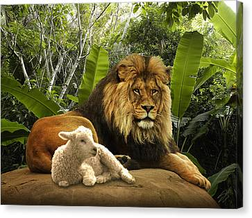The Lion And The Lamb Canvas Print by Matthew Schwartz