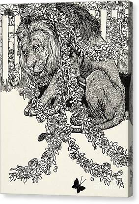 The Lion In Love, From A Hundred Fables Of Aesop Canvas Print