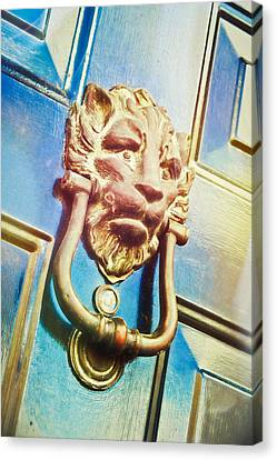 The Lion Is Guarding  Canvas Print by Tom Gowanlock