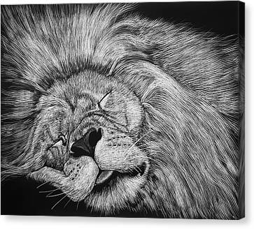 The Lion Sleeps Tonight Canvas Print