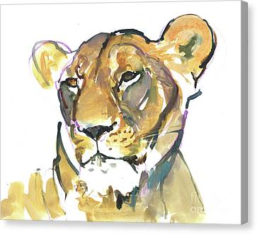 Smiling Canvas Print - The Lioness by Mark Adlington