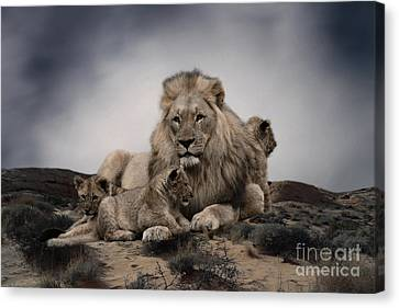 Canvas Print featuring the photograph The Lions by Christine Sponchia
