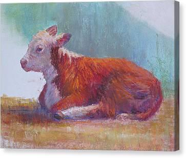 The Listener Canvas Print by Susan Williamson