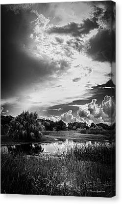 The Little Pond Canvas Print by Marvin Spates