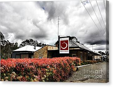 Canvas Print featuring the photograph The Little Red Grape Winery   by Douglas Barnard