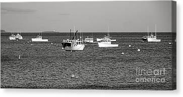 The Lobster Fleet At Tenant Harbor Canvas Print