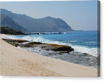 Canvas Print featuring the photograph The Local's Beach by Amee Cave