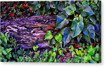 The Log In The Woods  Canvas Print