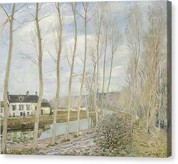 The Loing's Canal Canvas Print by Alfred Sisley