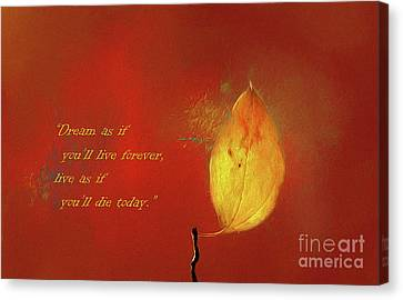 The Lone Leaf Canvas Print by Darren Fisher