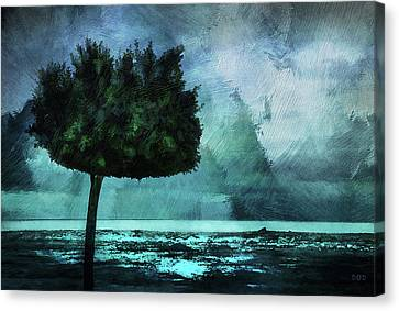 The Lonely Tree Canvas Print by Declan O'Doherty