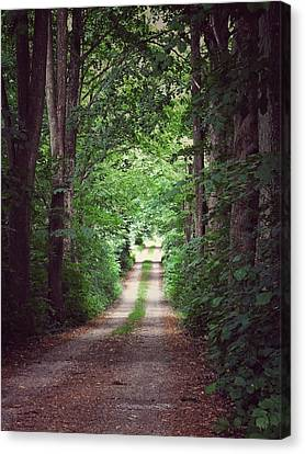 Canvas Print featuring the photograph The Long Driveway by Karen Stahlros