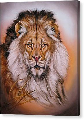 The Look Canvas Print by Martin Katon