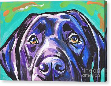 The Look Of Lab Canvas Print by Lea S