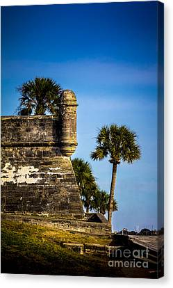 The Lookout Canvas Print by Marvin Spates