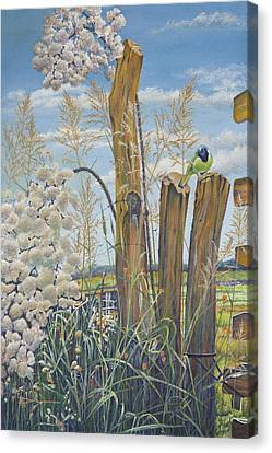 The Lookout, Texas Green Jay Canvas Print