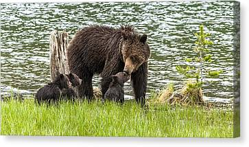The Love Of Mama Bear Canvas Print