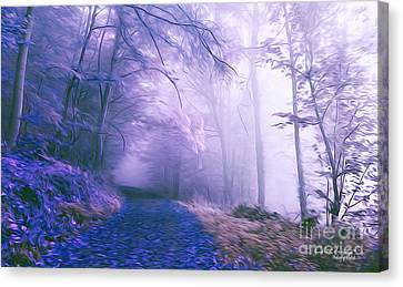 The Magic Forest Canvas Print by Chris Armytage