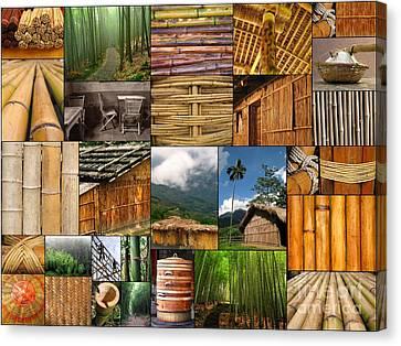 The Magic Of Bamboo Canvas Print by Yali Shi