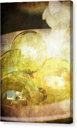 The Magic Of Christmas Canvas Print by Susanne Van Hulst