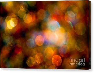 The Magic Of Your Touch Canvas Print