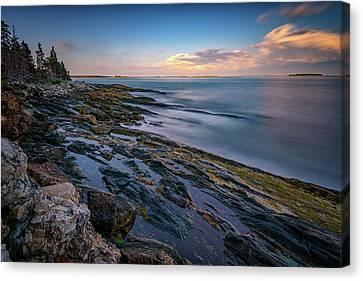 The Maine Coast Canvas Print by Rick Berk