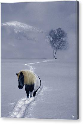 The Mane And The Mountain Canvas Print by Wayne King