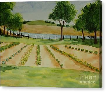 The Mangan Farm  Canvas Print by Vicki  Housel