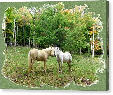Canvas Print - The Mares Watch by Patricia Keller