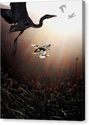 The Marsh Canvas Print by Wingsdomain Art and Photography