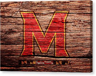 The Maryland Terrapins 1a Canvas Print by Brian Reaves