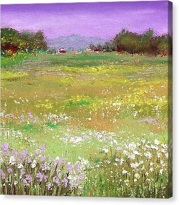 The Meadow Canvas Print by David Patterson