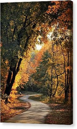 The Meandering Path Canvas Print by Jessica Jenney